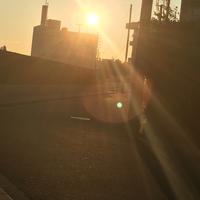夕日が綺麗だったので写真撮ってみたら、緑色の物体?が映りました。これなんでしょう?オーブ?