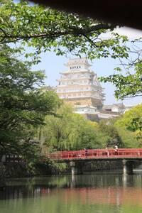 姫路城の明らかに白くなってるんですがこれって、、フレアですか?