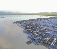 自然災害  発電事業者が破綻している場合、 ソーラパネルの撤去処分に税金は 投入されますか?