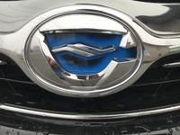トヨタカローラフィールダーのこのマークはなんで普通のトヨタのマークじゃないんでしょうか?