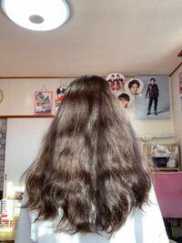 縮毛矯正と髪質改善についてです。 渋谷のDecoというお店の髪質改善というものをしてみたくて、縮毛矯正をしてから髪質改善するか、今の髪のまま髪質改善をやってみるか迷っています。  今の髪は痛みまくっていて、美しくないので、縛らずに過ごすことができません、、。  nanoで学校に髪を下ろして行きたくても行けません。  この写真の髪は縮毛矯正してまっすぐにしてしまった方がいいですか?  この髪で...