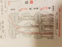 階層構造の相対照度の赤のラインの意味がよく分かりません。具体的にどういうったように見ればいいですか?