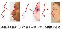 男性は成長によって眉骨が張った骨格になりますか?