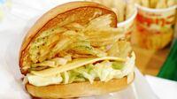 ハンバーガー ハンバーグの代わりにポテトチップスは許せますか?