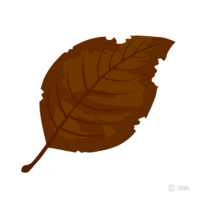 枯れ葉といったら何色をイメージしますか?