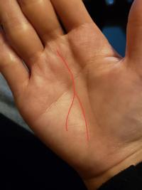 手相鑑定していただきたいです。 右手の手相にあるこの線はどんな意味があるのでしょうか?最近濃くなった気がします。  20代前半 女性