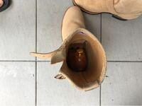 レッドウィングの9269のエンジニアブーツに、シューキーパーを入れたところ、抜けなくなってしまいました。ブーツは買ったばかりで革が硬いことが原因かと思います。 どのようにすれば抜けますでしょうか?