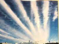 誰かこちらの雲の名前の正式名称わかる方いますか? 地震雲とかでは、なく正式名称わかる方おられたら教えて下さい(><)   わかる方にはチップ250枚納めます!よろしくお願いします!