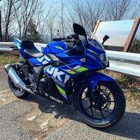 スズキのgsx250rはめっちゃ遅いってよく言われてますけど、250ccの他のバイクと比較するとgsx250rってそんなに遅い部類なんですか?