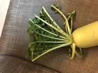 ダイコンの葉っぱ、野菜炒め以外で何か早くできる料理ありますか?