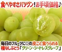 人間が品種改良した果物野菜は、人類が滅んだら絶滅ですか? 種なしブドウなど。  人間は様々な果物や野菜を品種改良してきましたよね、より甘くしたり、より大きくしたりなど。 特に種無しブドウや種無しバナ...