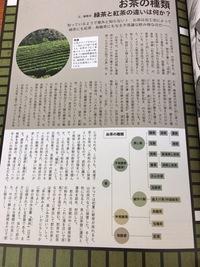 イギリスの紅茶も日本の緑茶も同じ茶で加工が違うって書いてありますがイギリスも緑の細長い茶畑があるのですか?