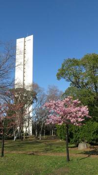 大阪 仁徳天皇陵の前に有るこの建物は何なのでしょうか? 慰霊館みたいなものが下に有りますがこの建物を仁徳天皇陵の展望タワーにすれば近くで雄大さが見れるのにとも思いました。