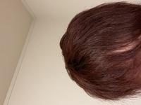 この髪色にマニパニの色は入るでしょうか? 2ヶ月前に美容室で黒から赤に染めました。(ブリーチはしてません) なんとなく赤っぽい色も飽きてきたので紫とか青っぽい色も試してみたいのです が原色みたいにはっきり色がならなくてもいいのですがある程度色が分かる程度には入るものなのでしょうか?