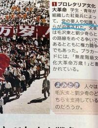プロレタリア文化大革命で迫害された党の悪人や知識人とは誰のことですか?毛沢東や林彪、劉少奇、鄧小平のことですか?教えてください!