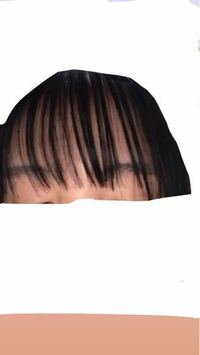 シースルー前髪失敗しました 美容院で、元々重くて長かった前髪をシースルーにしてもらおうと思ったのですが、こうなりました。 毛先をすかれて?というかあえて不揃いにしたみたいなんですけど、今流行ってるの...