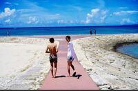 沖縄の本島なのですが、この写真の場所はどこのビーチでしょうか?