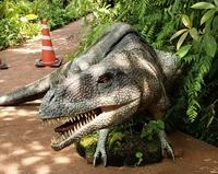 これはなんて恐竜ですか?2本爪がティラノサウルスを想像させますが、おでこの角が珍しいな、と。(やんばる亜熱帯の森にて)
