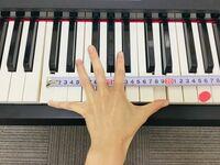 日本人女性ピアニストは、世界では手が小さいため不利なのですか? プロのピアニストでも、日本人、特に女性の場合手の平が小さいために、欧米から軽んじて見られる傾向があると聞きました。  ピアノを弾くには手の平が小さいと相当不利だとも? どうなのでしょう、これって真実なのですかね。 それとも、誇張された話なのでしょうか?  ピアノに詳しい方など、ぜひご意見をお聞かせください。