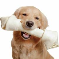 犬用の骨の形をしたガムは何でできてるのですか?