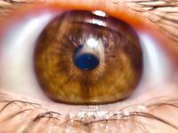 目の色とパーソナルカラーについてです。 私の目の色は何色ですか?また、私のパーソナルカラーは何ですか?目の色でパーソナルカラー診断ができると聞きました、教えてください!