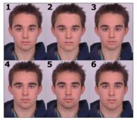あなたは6番の顔は何番目に好きですか?また、一番好きな顔は何番ですか?