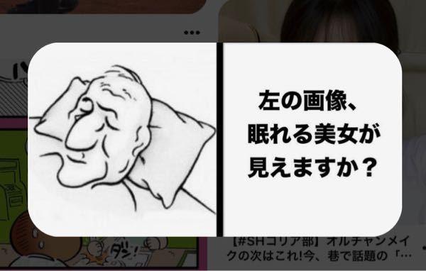 おじいさんにしか見えないんですけど、どうすれば眠れる美女が見えるんですか?