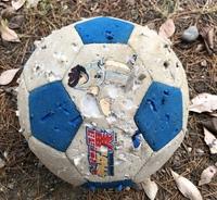 サッカーボールがボロボロに。  昨日の午前中、2歳の息子と公園に行き、砂場やサッカーをして遊びました。昼前に帰る時にサッカーボールを忘れて帰ってしまい、16時ごろ見に行ったのですがど こにも見当たらず...