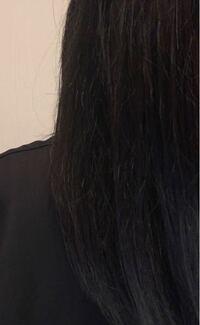 ヘアアイロンが欲しくて枝毛と髪の乾燥を抑えたいのですがヘアビューロンの3dか4dかリファのヘアアイロンかホリスティックキュアどのアイロンがいいと思いますか? 髪は毛量多め、太め、お風呂上がりにドライヤーしてもうねったりパサついたりしてます!
