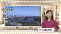 NHKの佐々木理恵アナウンサーが美人すぎると話題になっていますが佐々木アナが独身だったら。男性の方はナンパをしますか?
