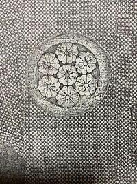 はじめまして。家紋に詳しい方に質問です。 私の家の家紋は家紋帳に載っていません。 祖父曰く、下総の国のどこかの殿様だったと言われたことがあります。ですが千葉県のお城を探してもこの家紋はありませんでした。 白黒コピーとなりますが こちらは、親戚が持っていた先祖の服に付いていた家紋らしいです。 7枚の桜で外側の桜6枚の中央の線からぐるっと真ん中の桜を1枚、残し1周できる仕組みにもなっていますし、...