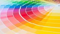 あなたを癒してくれる色 あなたの気持ちを落ち着かせてくれる色 あなたを応援してくれる色  あなたの好きな色は何ですか?