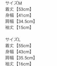 身長165以上の体重50前半の女子(10代)です。 通販サイトのGRL(グレイル)を初めて利用しようと考えているのですが、 肩幅が私の場合測ると40cmくらいなのですが、GRLのサイズ表が34.5などでした。 165くらいの女性はMかLどちらがいいでしょうか!