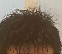 癖毛の高校生です。髪が濡れている時のパーマのような髪質が好きなのですが、どうしたら乾いた後も髪が濡れているような髪質をキープできますか? 乾かした後はぺちゃんこな髪型になってしまいます。   高校はワックス大丈夫です。 写真は濡れている時の髪です。