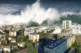 南海トラフ・地震予知・原発 地震学者の存在意義は何ですか? 主流から外れた学者は村八分? ロバ...