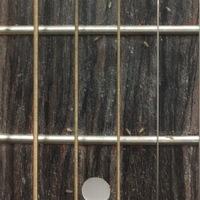 虫が大量に湧きます。  ギターに大量についているんですが、綺麗に全部とっても1日経ったらまた大量に着いてます。 取ろうすると飛んで逃げます。 ギターにしか着いていません。 なんの虫 でしょうか? ギ...