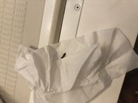 朝からすみません。  トイレの換気扇から、何かのうんちが落ちてきます。フィルターをしてカバーしているのですが、何の糞か気になります。 わかるでしょうか?