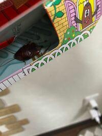 ゴキブリホイホイにゴキブリがかかったのですが何故か半分になってました。何故ですか?
