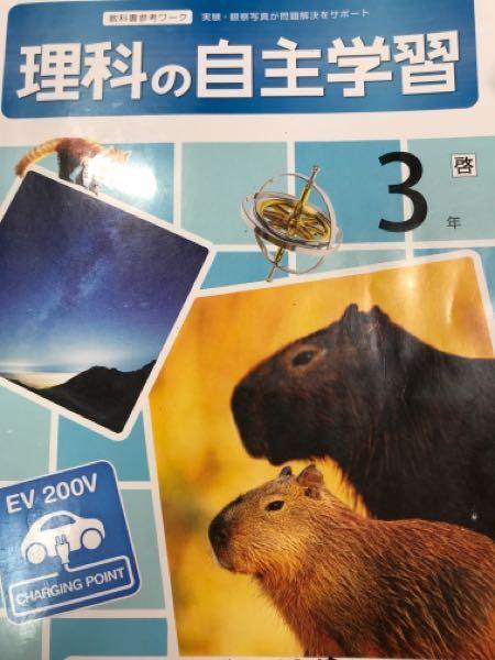 知恵コイン500枚 中学3年生です。 ↓の画像のワークの答えを持っている方、17ページまで写真を撮って送って頂けませんか? 新学社 出版のワークです。