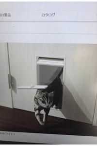 風水的にどうなのか教えてください。猫のトイレをトイレの中に設置する際、ドアに猫の出入口をつけたいと思っています。 風水的にトイレのドアは閉めておいたほうがいいと目にしたことがあるのですが、この猫用の...