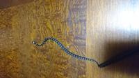 この蛇の種類を教えてください マムシの幼体ですか? アオダイショウの幼体ですか? 家の窓の淵にいました。 詳しい方お願いします