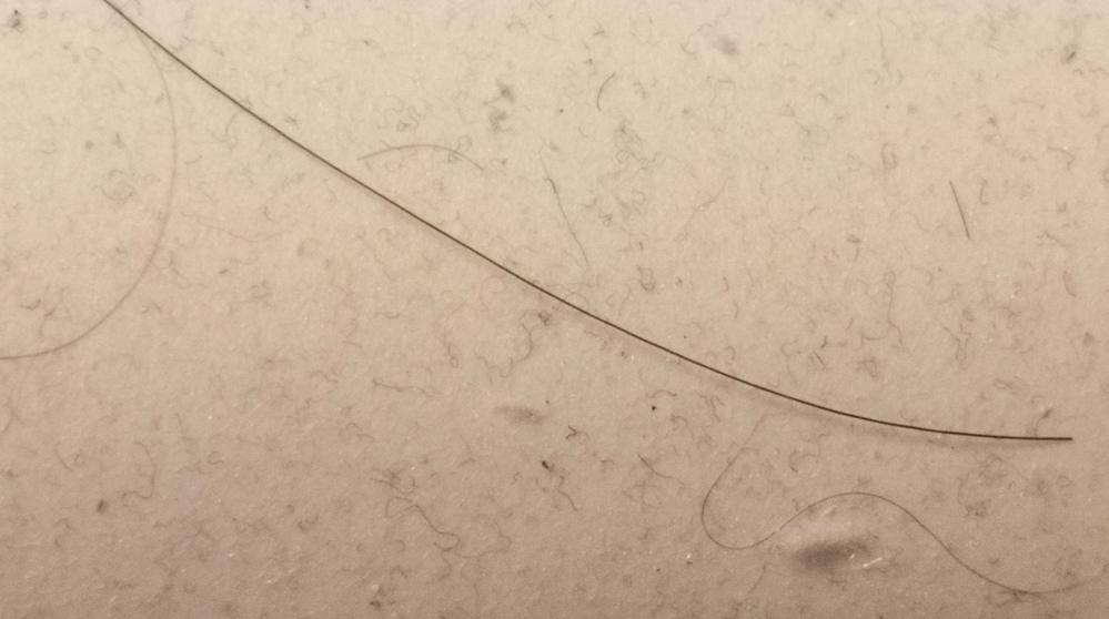 細い抜け毛についてです。 画像汚くてすみません。 最近抜け毛が気になっているのですが、画像の両端にある細い毛は普通の人も出るものなのでしょうか? それとも抜け毛が信仰している人のみなのでしょうか? 比