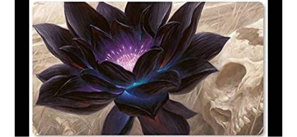 マジックザキャザリングについて質問です。 ブラックロータスのこのイラストの背景は何を意味しているんですか??