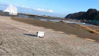 写真の場所は何処でしょうか? 新潟県の海です。 地名か場所の名称を教えてください。