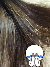 ハイライトを入れたら髪の毛がこんな状態です。2週間でこんなになるものですか?白髪染めした人みたいになってないですか? 白髪なんか1本も無かったのに白髪ある人みたいですごく悩んでます。色々調べたら切るし...