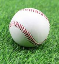 プロ野球チームどこのファンですか? 野球詳しくありません^^;