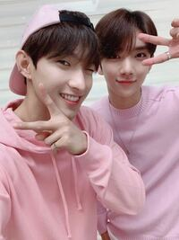 この2人の名前教えてください k-pop SEVENTEEN 韓国 アイドル