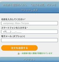 電話番号についての質問です 海外の通販サイトで買い物をしようと思ったのですが、 電話番号入力する欄があり、 そこに「+7」と書かれていました。 これは日本の電話番号は対応していないということでしょうか