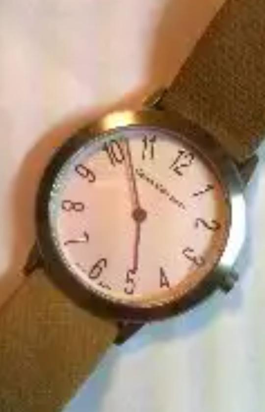 この腕時計いくらくらいでしょか? 腕時計にお詳しい方よろしくお願い致します。 m(__)m
