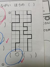 小学校1年生の宿題ですが、右の線が長いと思うんです。でも正解は左のようで、どなたか解説お願いします。